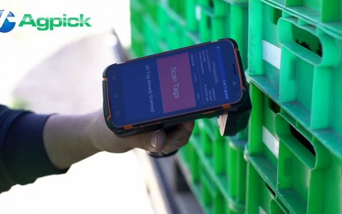 AgPick In Field Strawberry Picking Double Scan Fraud Control